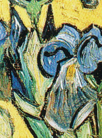 Irises Van Gogh Dog