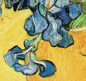 Van Gogh Irises Left Leg
